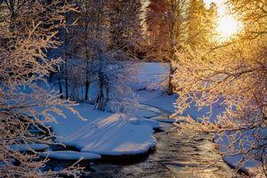 Бесплатные фото зима,закат,лес,деревья,речка,природа
