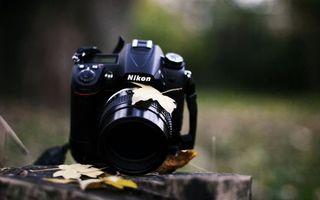 Бесплатные фото фотоаппарат,никон,объектив,кнопки,пенек,листья