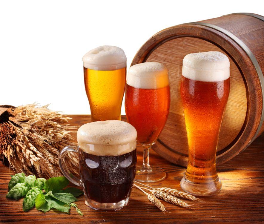 Фото бесплатно пиво, бочка, бокалы, кружки, пена, ячмень, солод, напиток, напитки