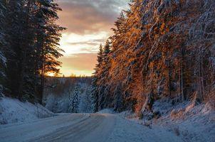 Бесплатные фото Швеция,Вермланд,зима,дорога,лес,деревья,закат