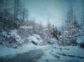 Бесплатные фото зима, снег, дорога, деревья, пейзаж