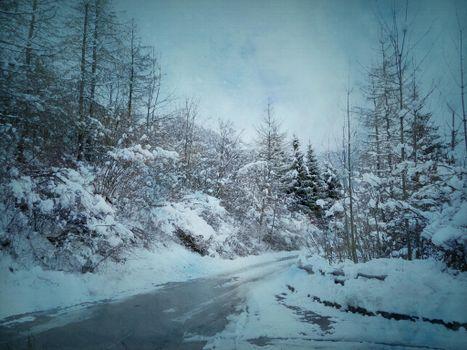 Photo free snow, road, winter road