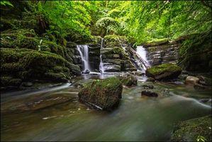 Бесплатные фото водопад,водоём,лес,деревья,пейзаж