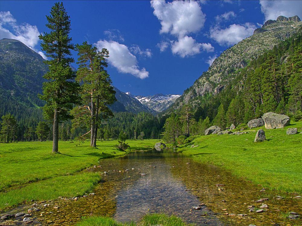 Free photo pond, mountains, trees - to desktop