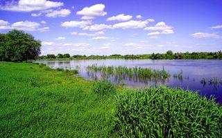 Заставки берег,трава,деревья,река,растительность,небо,облака