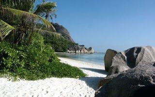 Бесплатные фото тропики, побережье, песок, растительность, камни, скалы, море