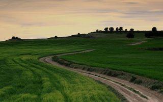 Бесплатные фото холмы,дорога,поле,трава,деревья,небо