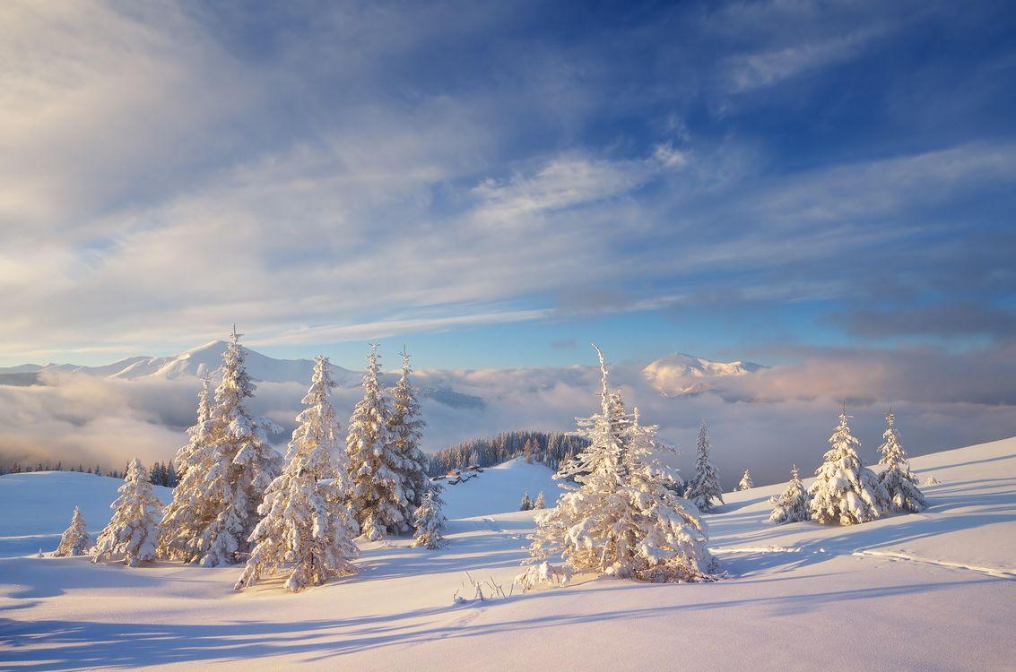 Фото бесплатно зима, горы, снег, сугробы, следы, домики, деревья, пейзаж, пейзажи