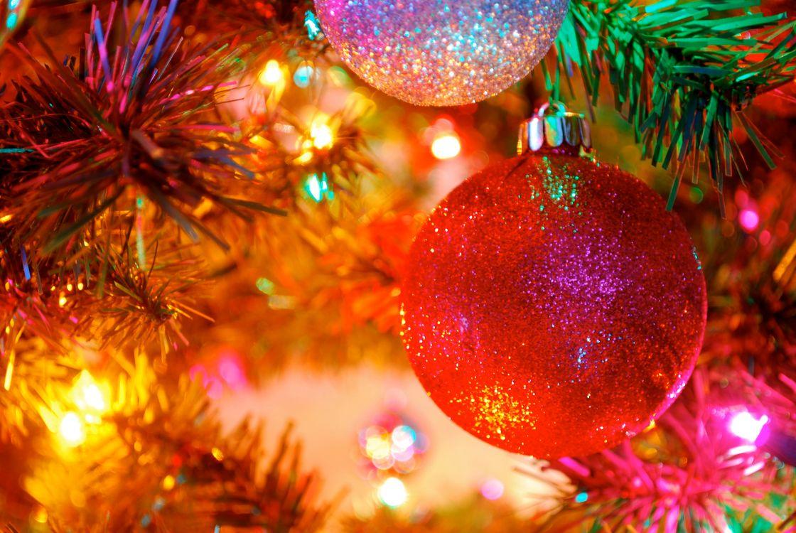 Фото бесплатно новогодняя ёлка, новогодние обои, игрушки, украшения, огни, иллюминация, гирлянды, новый год, новый год