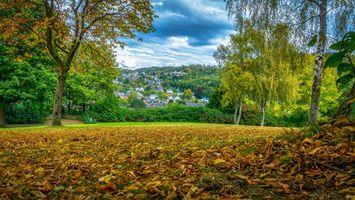 Бесплатные фото осень,поляна,деревья,дома,опавшие листья,природа,пейзаж