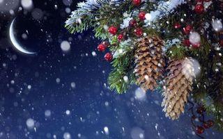 Заставки Новогодние шишки,ветки,ягоды,луна,снег