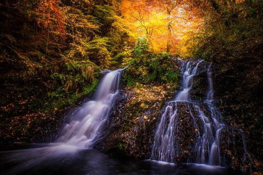Free autumn landscape photos on the phone