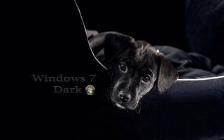 Windows 7 Dark dog