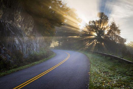 Фото бесплатно извилистая дорога, загородная трасса, лучи солнца