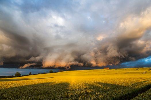 Фото бесплатно поле, шторм, буря