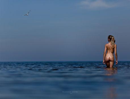 Фото бесплатно голая, купается, океан