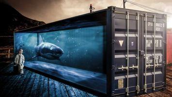 Бесплатные фото контейнер,стекло,вода,акула,мальчик,галстук,портфель