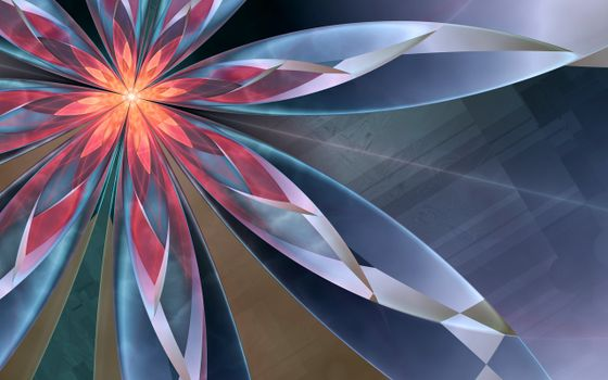 Photo free Flower, glow, abstraction
