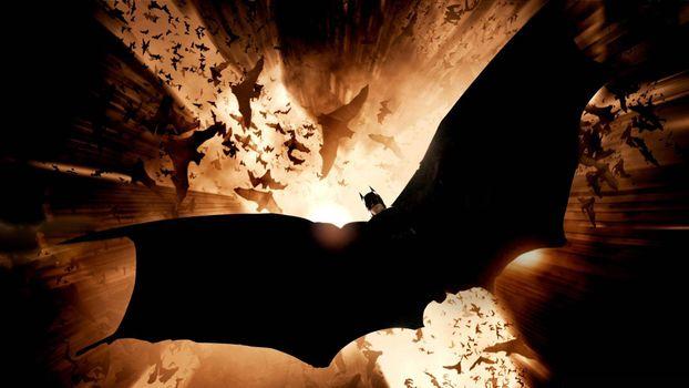 Photo free batman, flying, wings