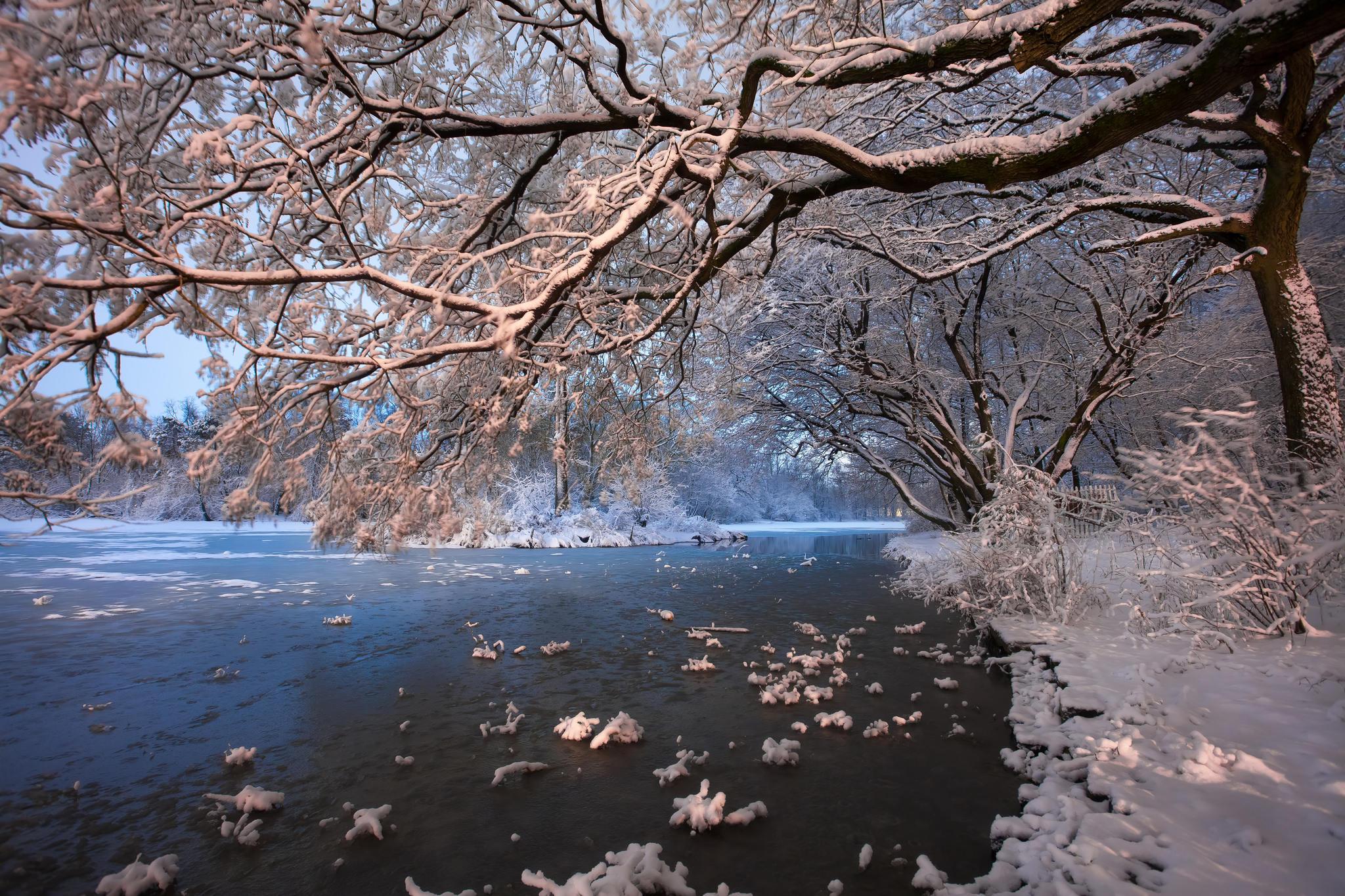 обои зима, река, деревья, пейзаж картинки фото