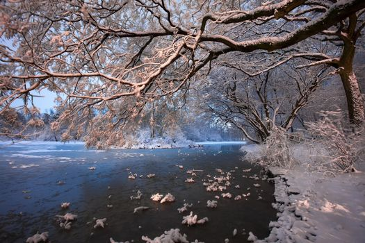 Photo free river, snowy shores, trees