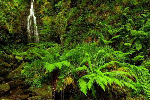 Photo free Gorbea, nature park, Basque Country