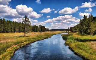 Бесплатные фото река,течение,берега,трава,деревья,небо,облака