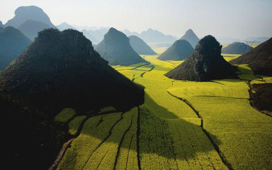 Фото бесплатно горы, холмы, растительность