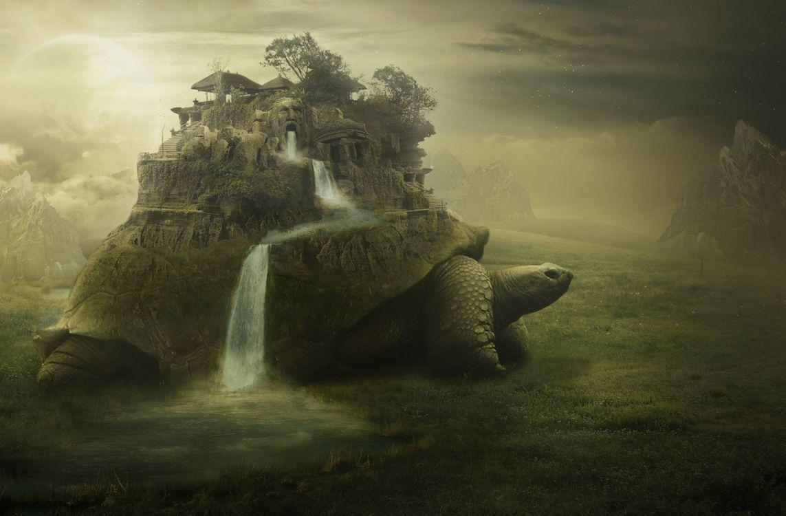 Фото бесплатно черепаха, водопад, лицо, лестница, фантастика