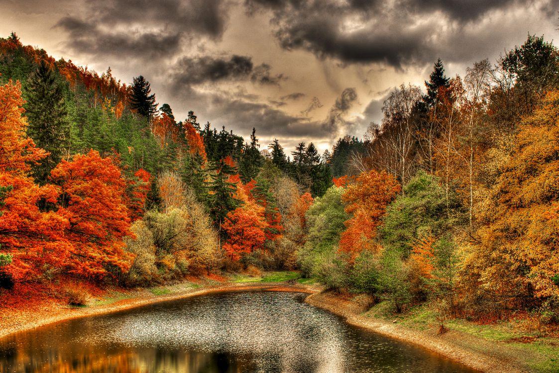 Фото бесплатно осень, озеро, тучи - на рабочий стол