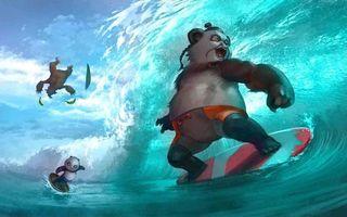 Бесплатные фото панды,серфинг,море,волна