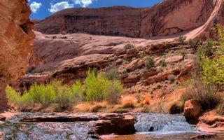 Бесплатные фото ущелье, песчаник, камни, трава, ручей, течение