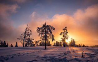 Фото бесплатно зима, закат, снег