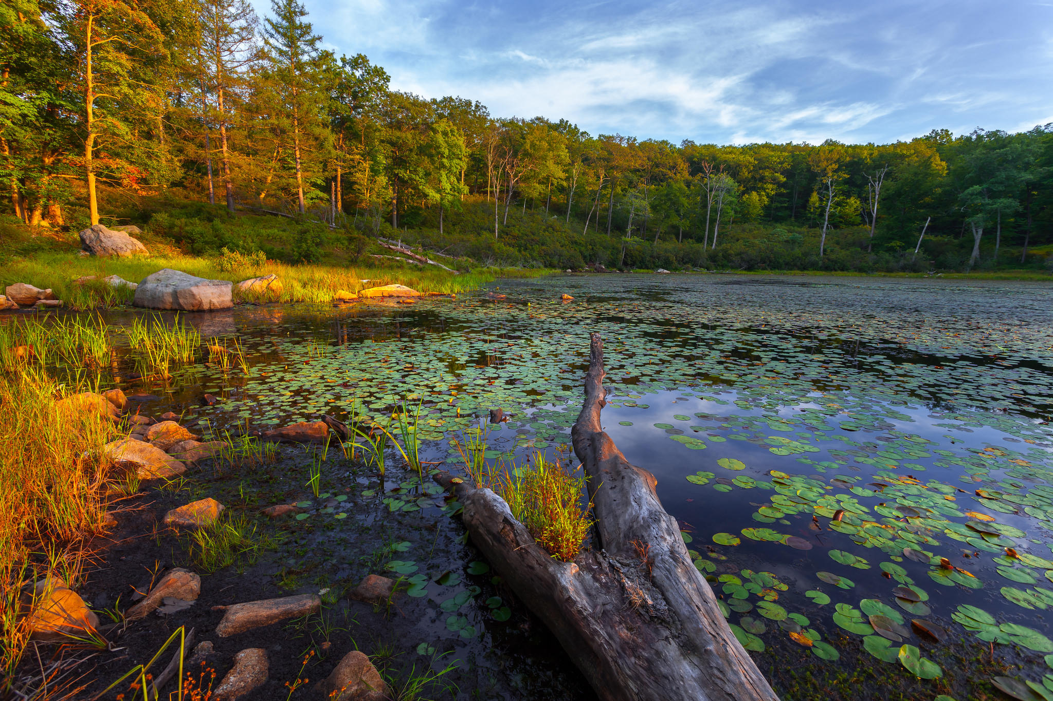 Обои Государственный парк Гарриман, Нью-Йорк, озеро, закат