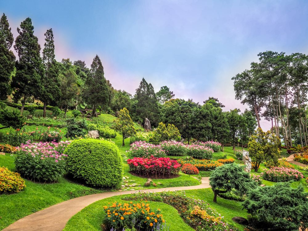 Photos for free flowers, garden, flowerbeds - to the desktop