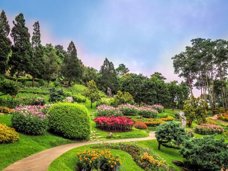 Photo free flowers, garden, flowerbeds