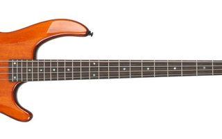 Заставки бас гитара,струны,гриф,лады,фон белый