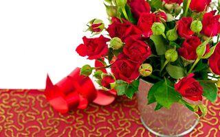 Бесплатные фото розы,лепестки,красные,бутоны,стебли,листья,ваза
