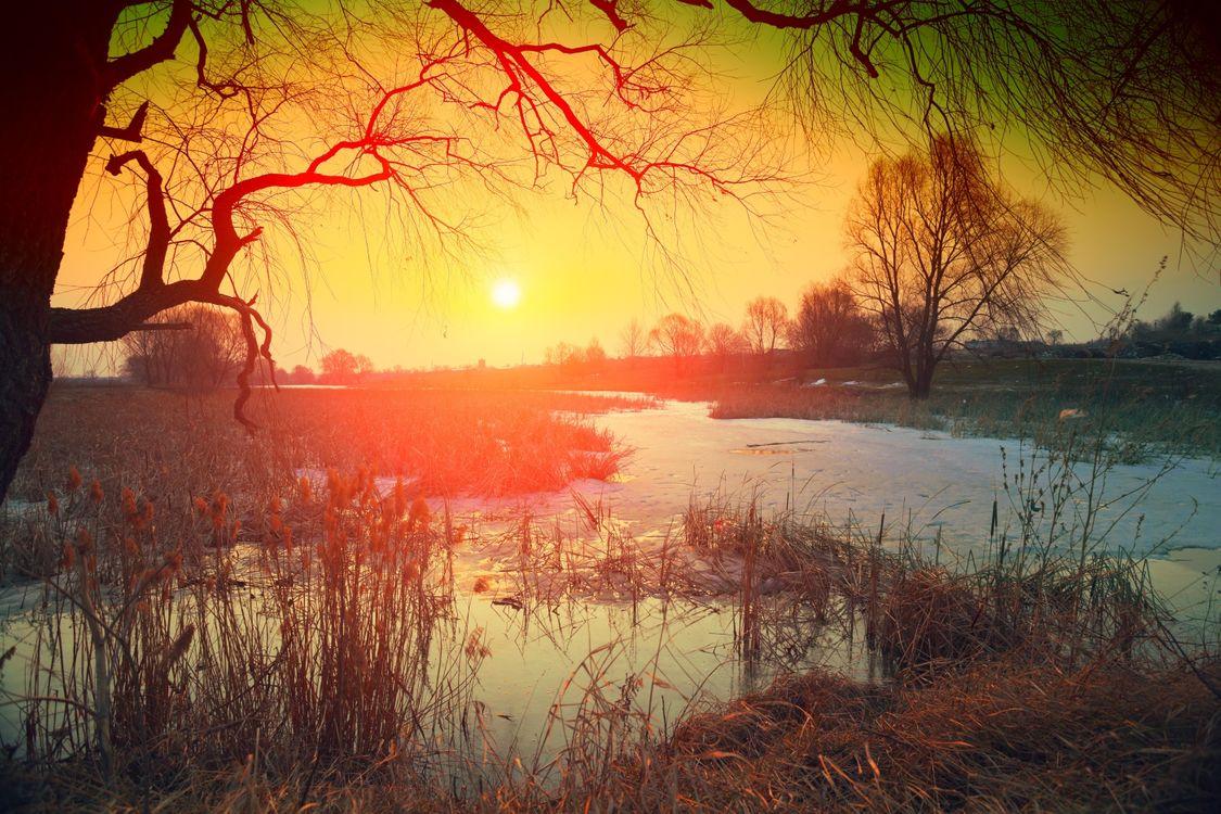 Фото бесплатно осень, река, закат, деревья, пейзаж, пейзажи