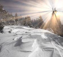 Бесплатные фото зима, снег, сугробы, деревья, пейзаж