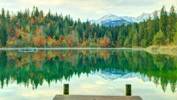Заставки деревья, Швейцария, озеро