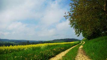 Бесплатные фото холмы,полевая дорога,трава,цветы,деревья,небо,облака