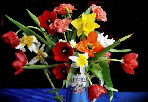 Фото бесплатно нарциссы, тюльпаны, ваза
