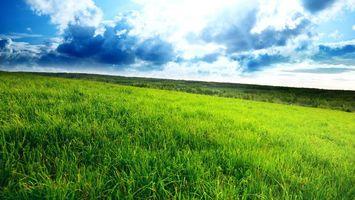 Бесплатные фото холм,луг,трава,зеленая,небо,облака