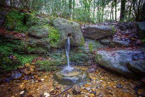 Бесплатные фото Парк,Западный Йоркшир,Англия,ручей,водопад,скалы,деревья